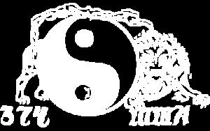 374mma-logo-white
